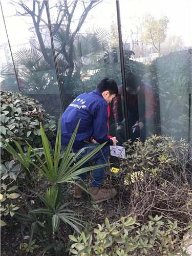 长宁区靠谱的灭鼠公司 贴心服务「江苏华美环保工程服务供应」