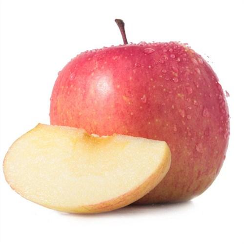 山东苹果基地
