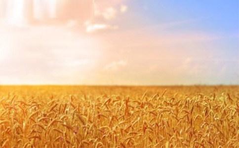 淄博博信農業科技有限公司