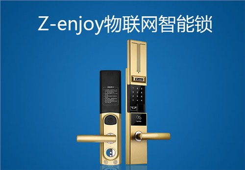 物联网密码门锁