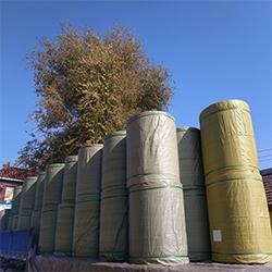 上海供应牛皮纸品牌「雄风供应」