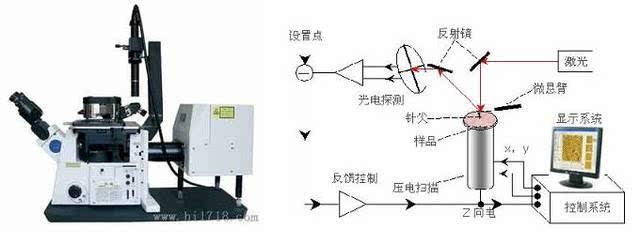 上海销售原子力显微镜销售价格,原子力显微镜