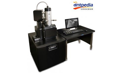 专业场发射扫描电子显微镜-含EDS和EBSD推荐 抱诚守真「通谱供应」