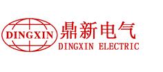 上海鼎新电气(集团)有限公司