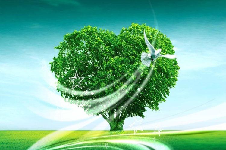 凉山环保材料价格,环保材料