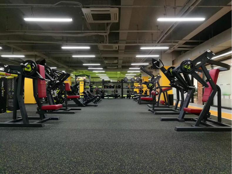 施菲特健身器材销售厂家,施菲特健身器材