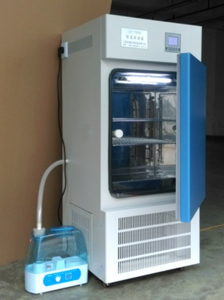 MJ-100F-I霉菌培养箱