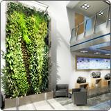 松江区优良室内植物出租哪家好,室内植物出租