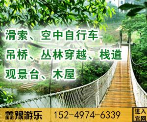湖南省专业丛林穿越设计厂家「鑫豫供」