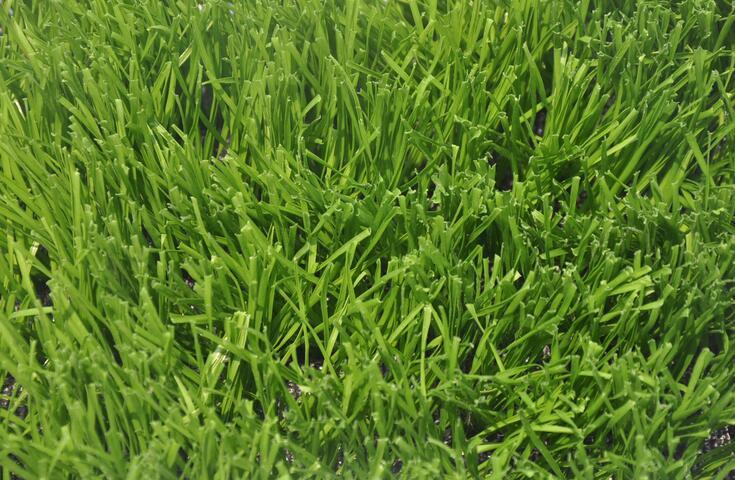 黑龙江人造草坪厂家,人造草坪