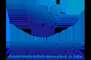 捷赢(山东)科技信息咨询有限公司