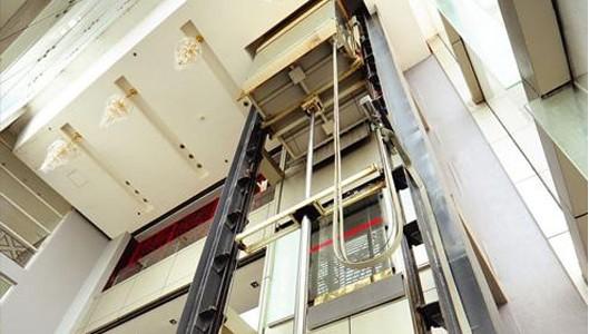 室內家用電梯定制 蘇州弗萊曼電梯供應