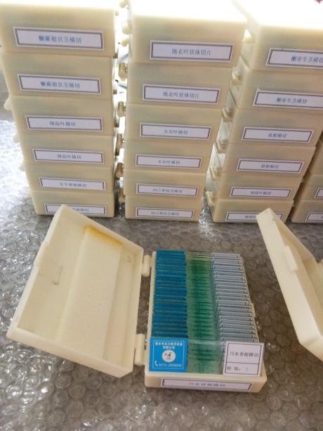 江西生物切片生产,生物切片