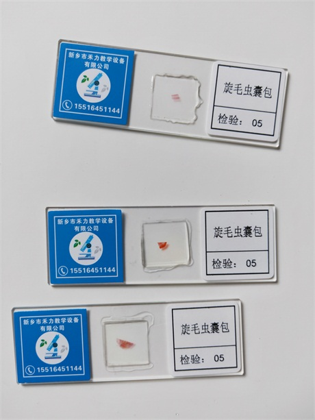 江苏生物切片价格,生物切片