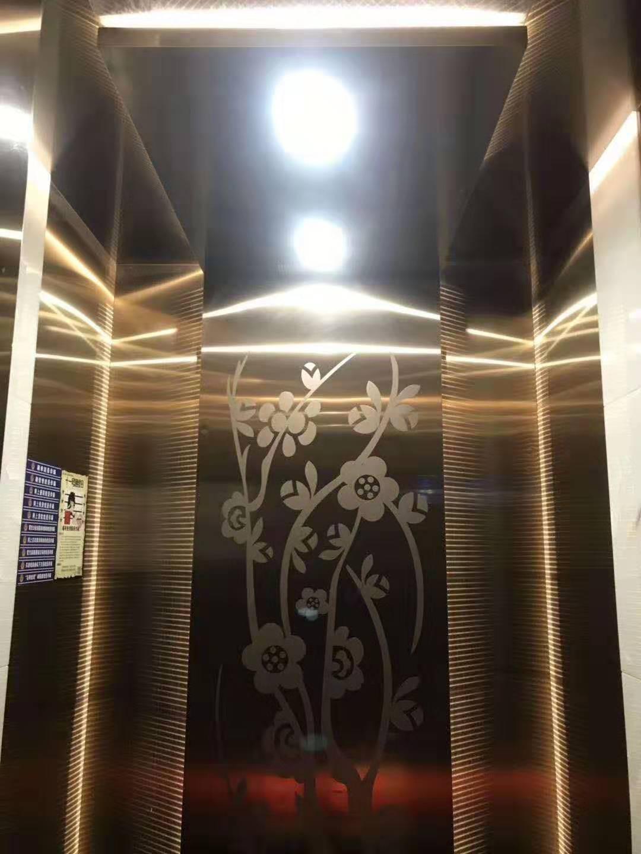 工业园区商务乘客电梯,乘客电梯
