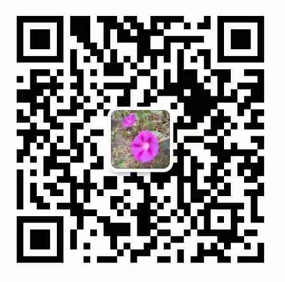 淄博华诺机械制造有限公司