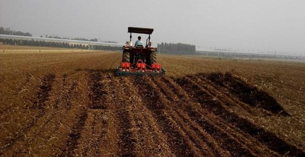 山东高产量花生播种机推荐 值得信赖 河源市李旭农业机械设备供应