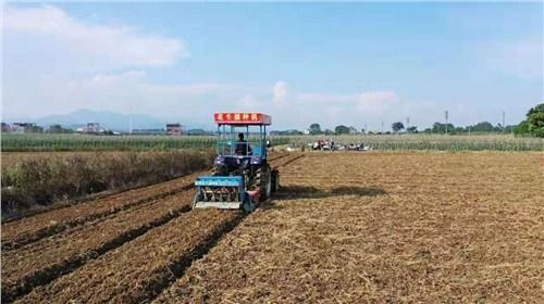 山东质量花生播种机出租价格 欢迎咨询 河源市李旭农业机械设备供应