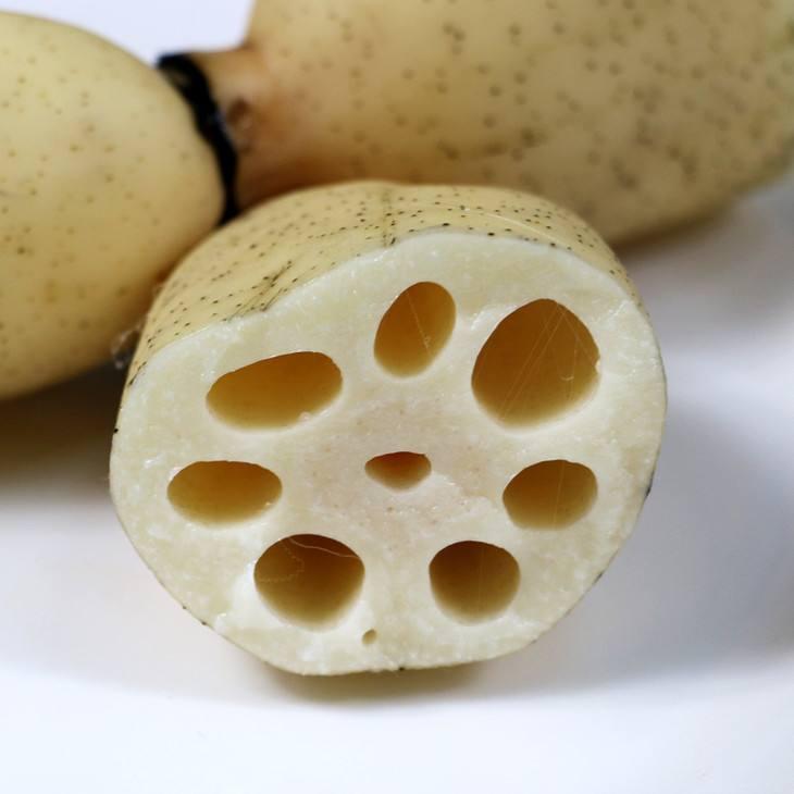 江西藕生产基地,藕
