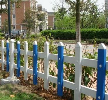 互助优良绿化草坪高品质的选择 诚信服务「青海乾沣农林牧科技供应」