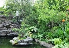 平安园林绿化哪家好,园林绿化