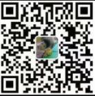 东莞市伟龙机械租赁有限公司