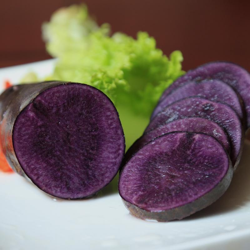 嘉峪关黑美人土豆种植条件,土豆