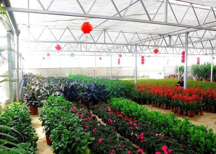 迪庆多肉温室大棚设计 服务至上 云南姚前达温室大棚工程供应