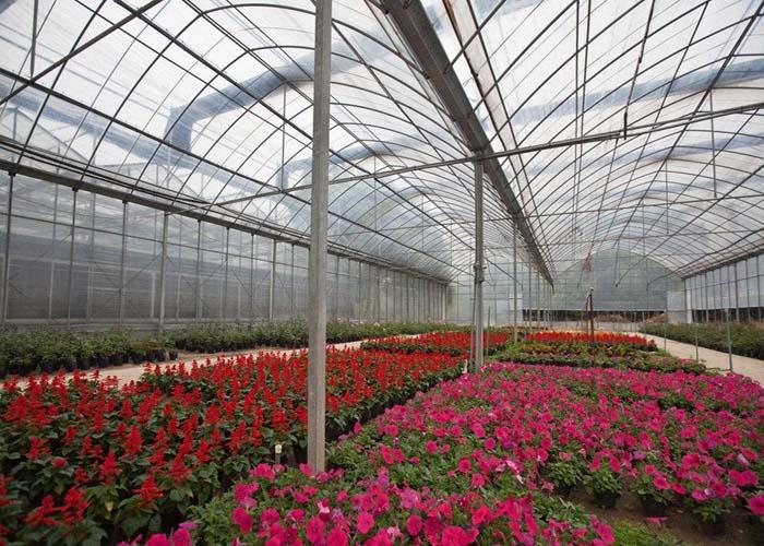 临沧蔬菜温室大棚施工 服务至上 云南姚前达温室大棚工程供应