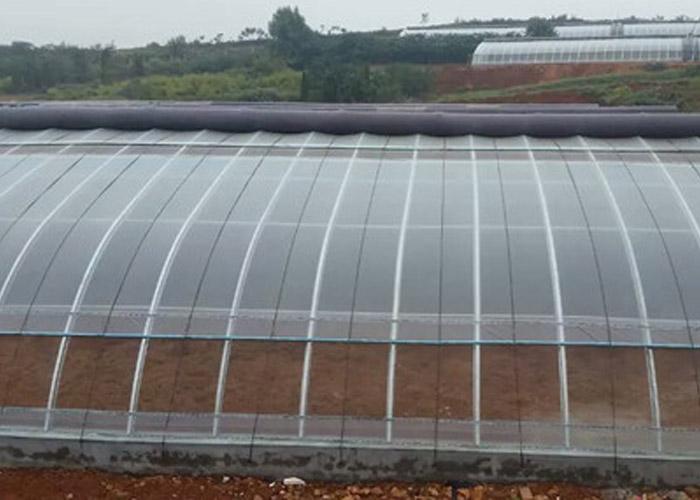 德宏果树温室大棚价格 创造辉煌 云南姚前达温室大棚工程供应