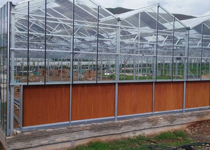 临沧玫瑰花温室大棚施工 服务为先 云南姚前达温室大棚工程供应