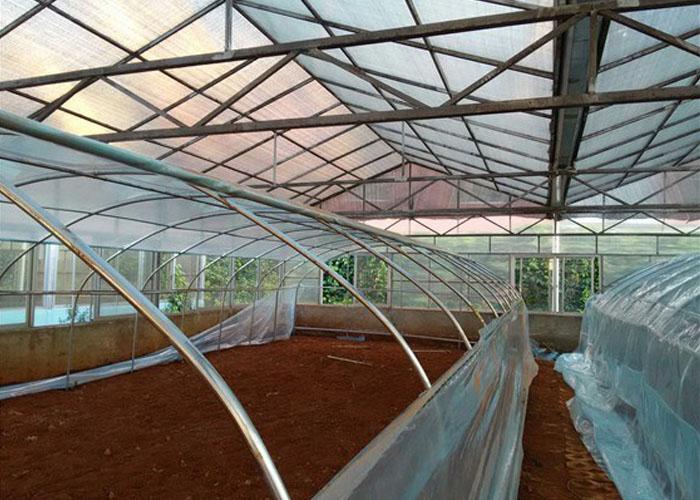 昆明藥材溫室大棚建設 鑄造輝煌「云南姚前達溫室大棚工程供應」