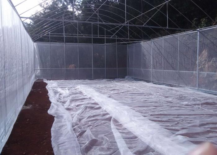 丽江餐厅大棚设计 客户至上 云南姚前达温室大棚工程供应