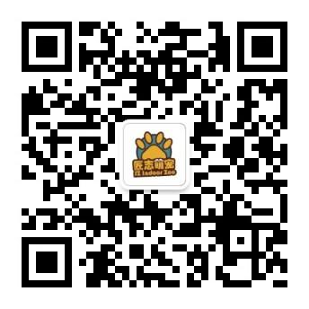 青岛匠志景观工程有限公司