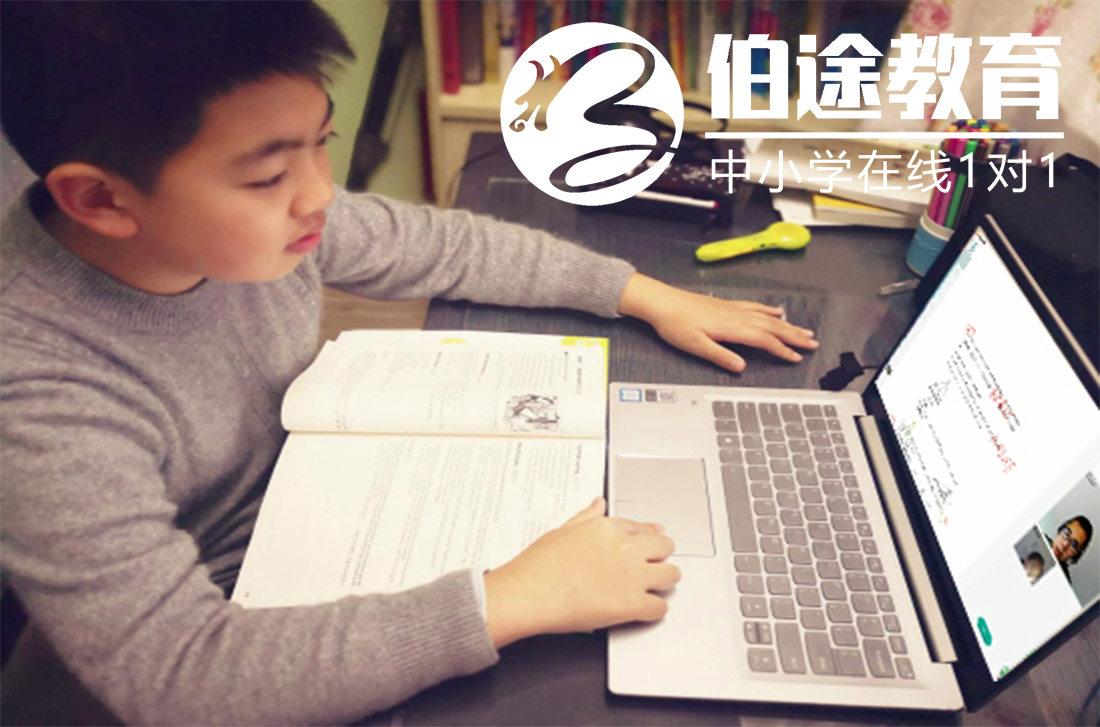 成都高一网上一对一辅导 欢迎咨询 伯之途教育供应