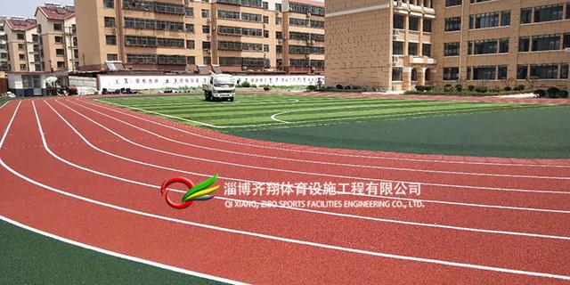 山东专业塑胶跑道材料 齐翔体育供应