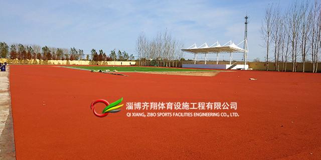 室内塑胶跑道生产厂家 齐翔体育供应