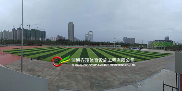 济南景观人造草坪价格表 齐翔体育供应