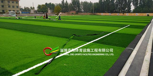 东营景观人造草坪质量 齐翔体育供应