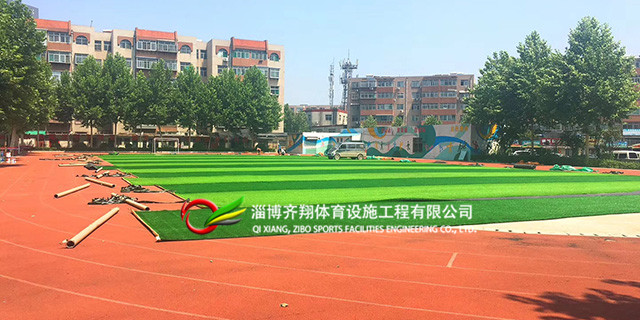 济宁笼式足球场人造草坪厂家排名 齐翔体育供应