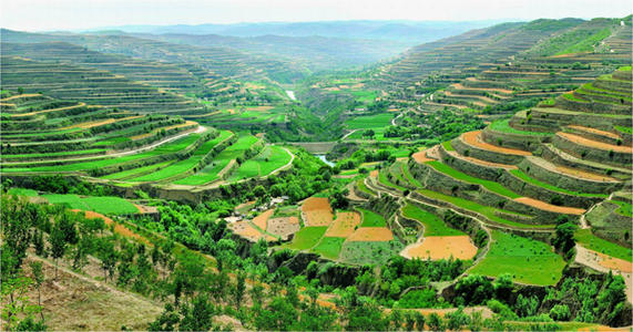 青州房地产水土保持编制单位,水土保持