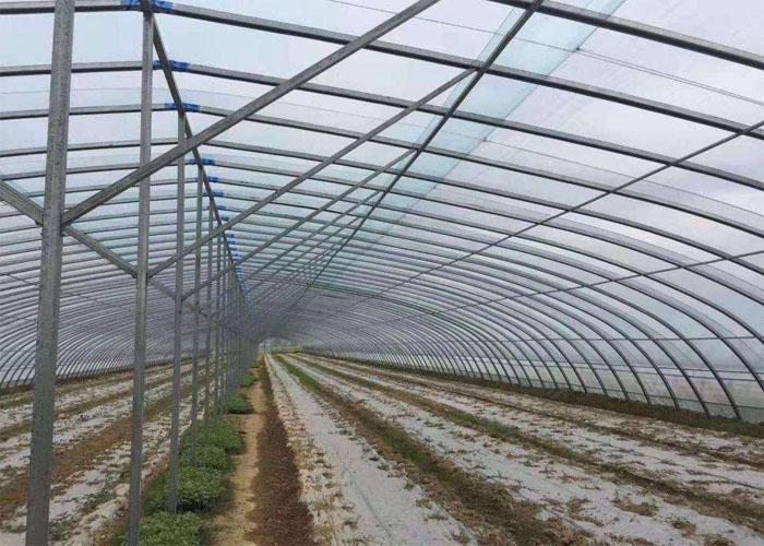 文山蔬菜大棚建设 服务为先 云南姚前达温室大棚工程供应