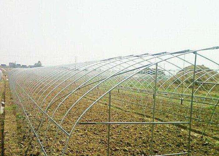 玉溪草莓大棚 贴心服务 云南姚前达温室大棚工程供应