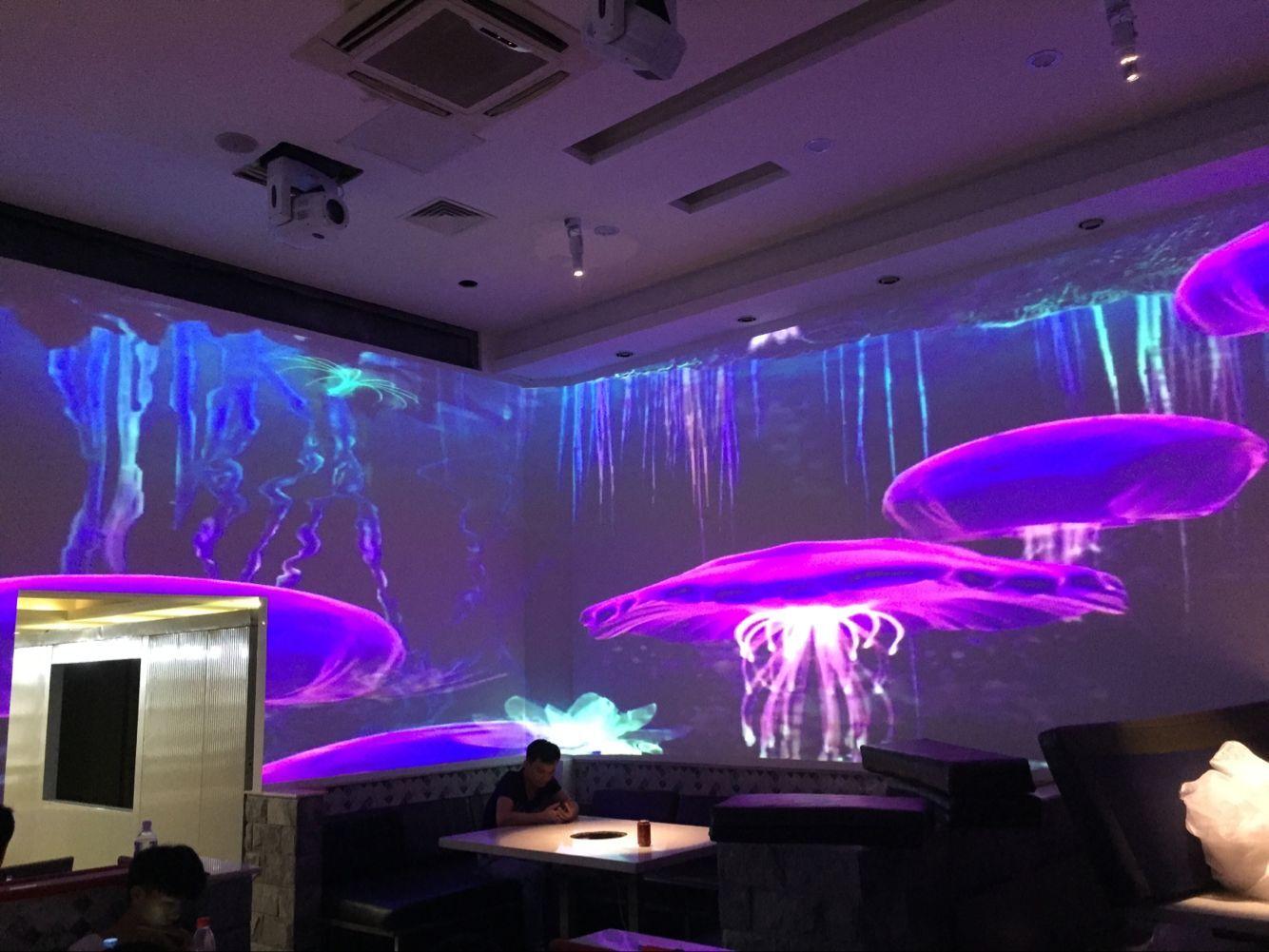 河北个性光影餐厅餐厅投影 上海音维电子科技供应「上海音维电子科技供应」