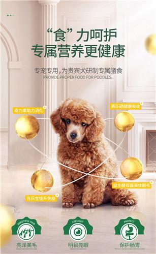 湖南成犬狗糧代加工「艾塔寵物供應」