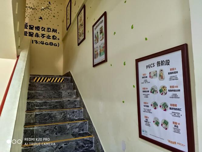 青島特殊兒童咨詢中心 真誠推薦「青島守望星學苑供應」