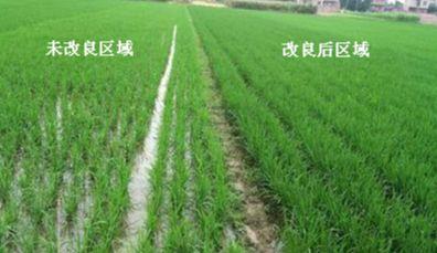 农业土壤修复行业,土壤修复