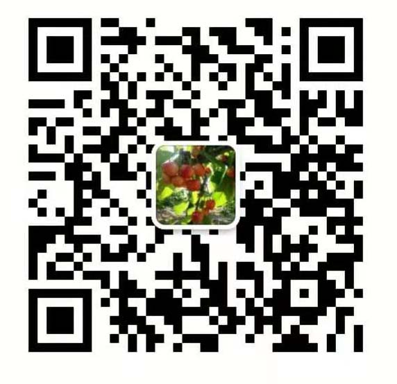 兜果果都市農業開發(淄博張店區)有限公司