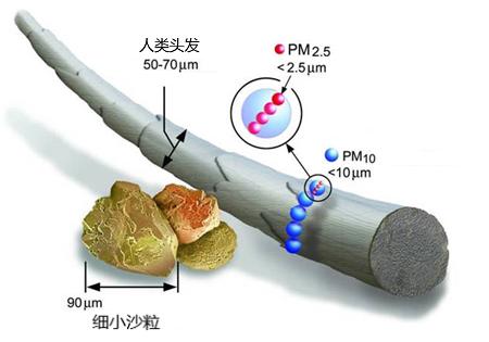 上海妇幼**院室内PM2.5