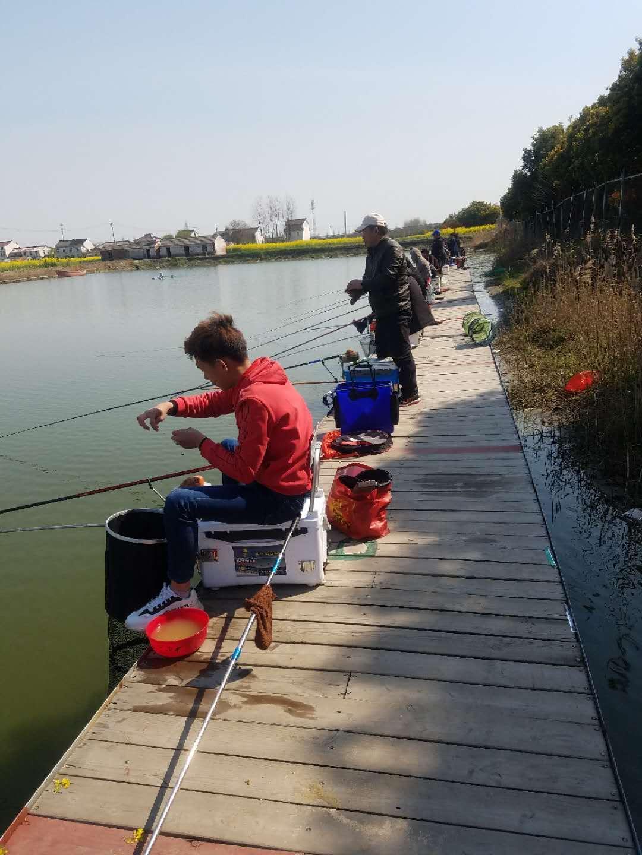 江苏钓鱼联系方式,钓鱼